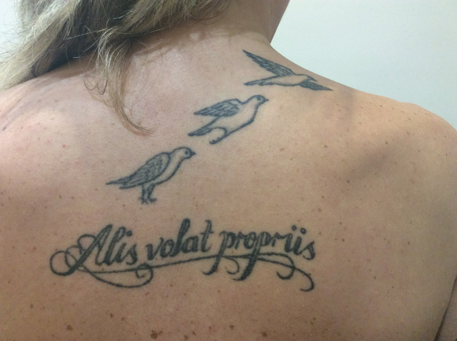 Birds back 1